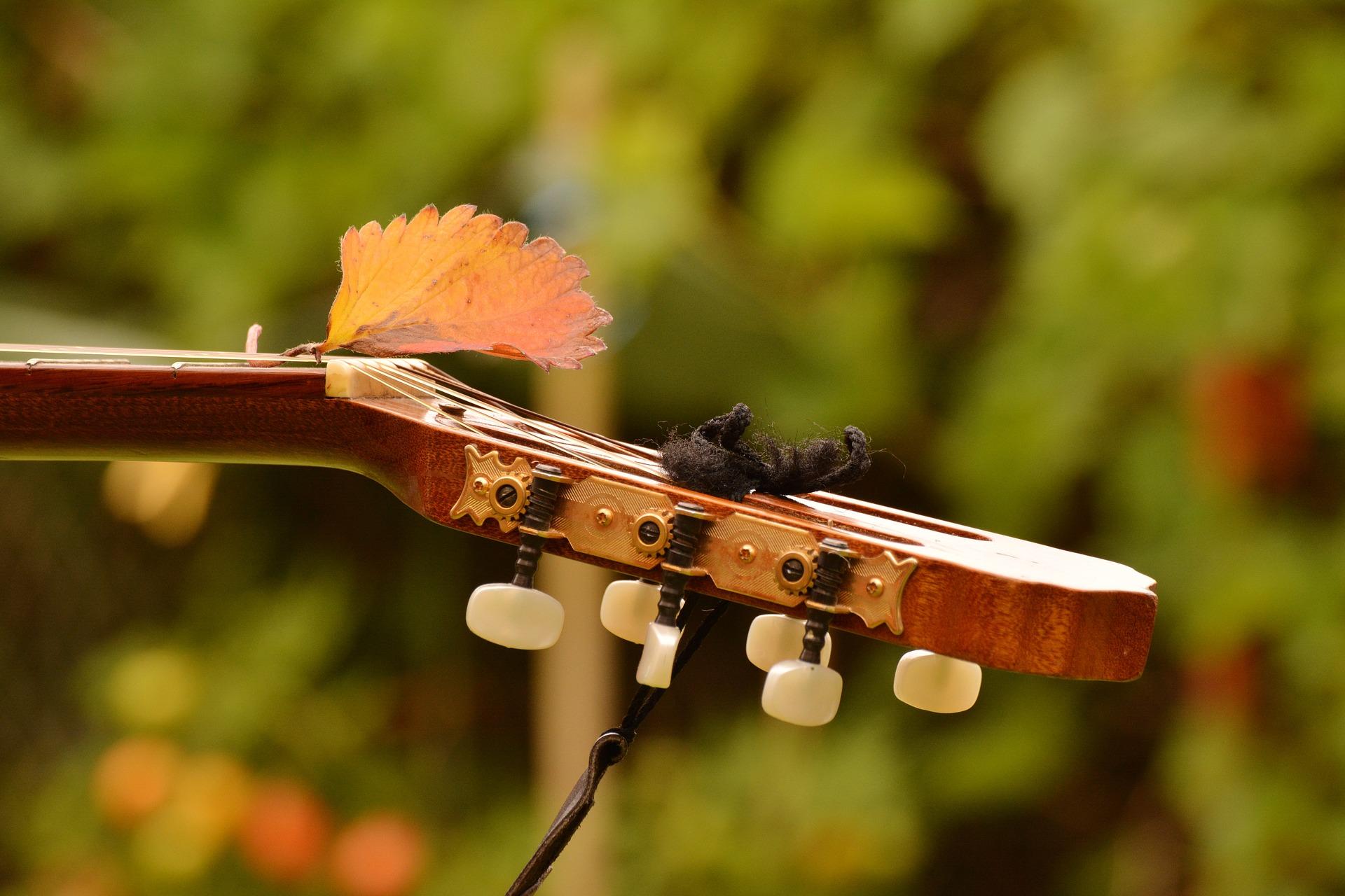 Cuidados y mantenimiento de la guitarra
